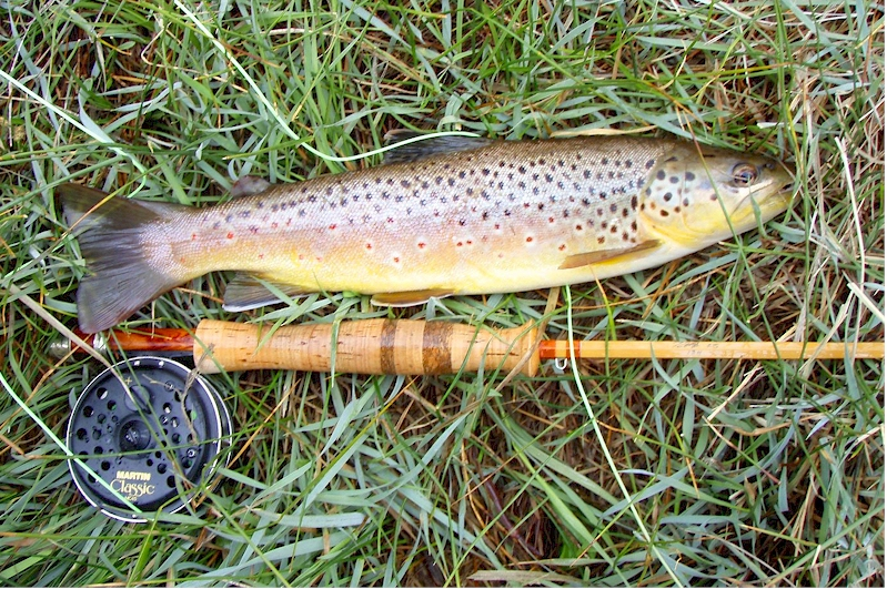 Hot Creek Brown and Cane Rod.