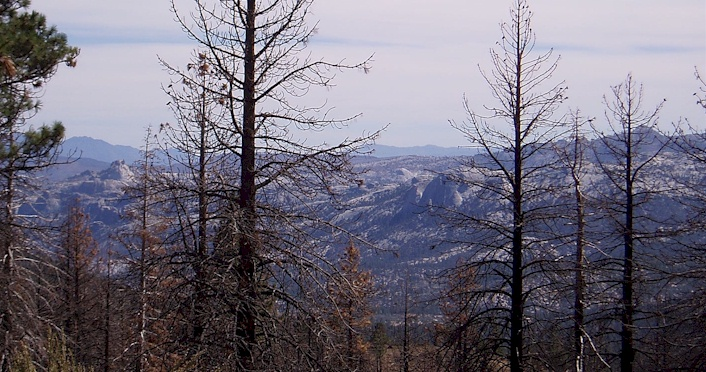 Looking across to the Domeland Wilderness